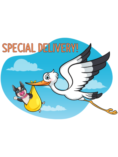 Special Delivery 3